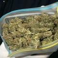 Ейские полицейские изъяли 100 грамм марихуаны