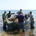 В Ейске браконьер ответит за ловлю рыбы сетями