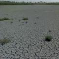 Спасти Ханское озеро могут только инвесторы