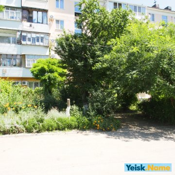 Двухкомнатная квартира на ул.Янышева  Вариант № 7
