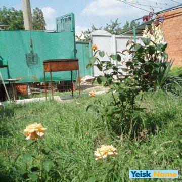Дом по ул.Амурской Вариант № 142